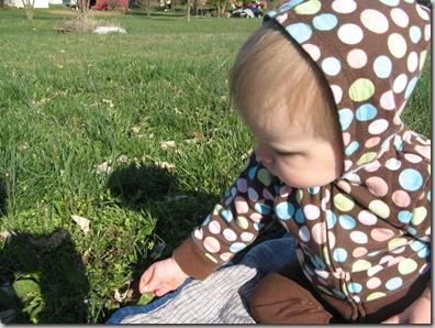 2010-03-30 Spring has sprung 026