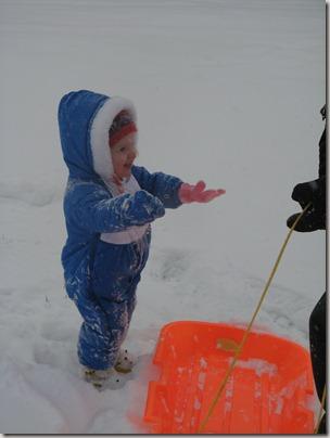 More snow 003