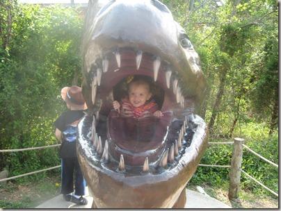 Dinosaur world 014