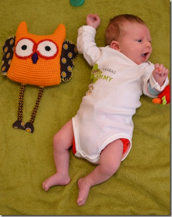 Max 1 month owl 007