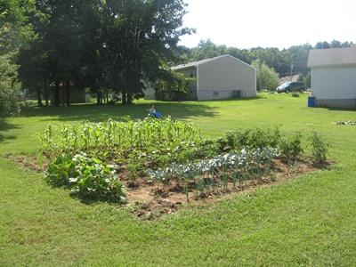 Kickert's Garden Plot