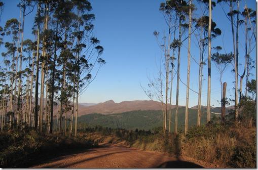 Africa 037