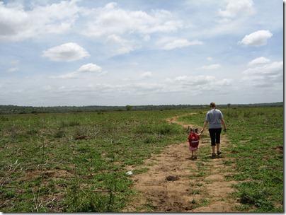 Bush walk 2 004