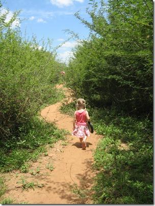 Bush walk 2 028