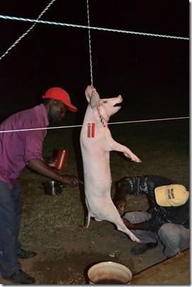 Pig Roast 027