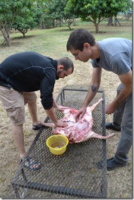 Pig Roast 043