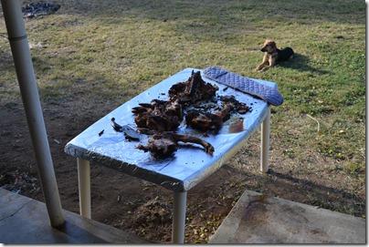 Pig Roast 080